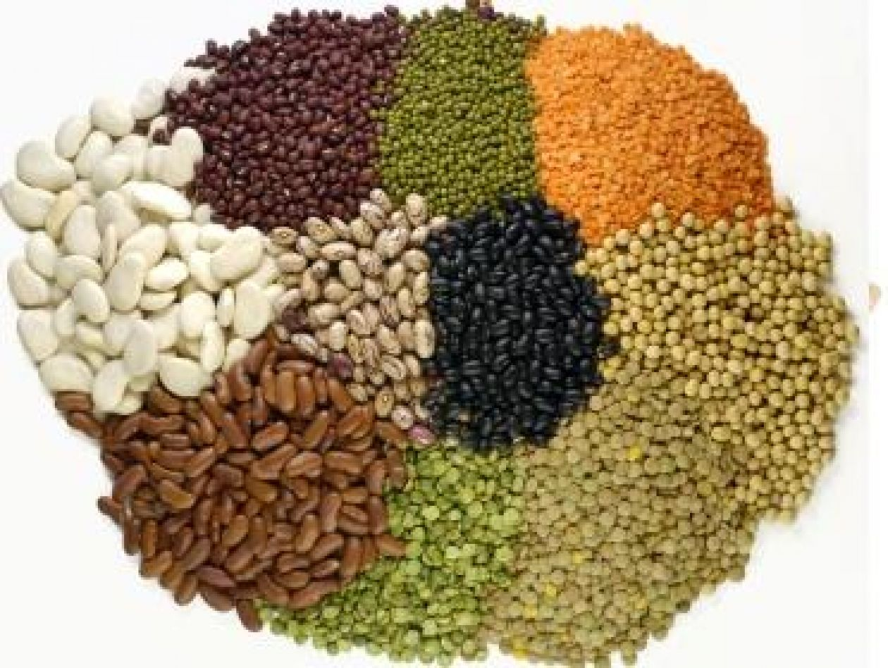 Top Foods High In Protein Hd